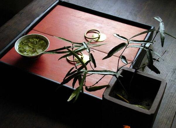 博大精深的传统茶艺茶道分为六大类别