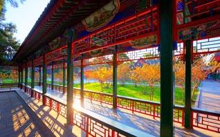 中式古典园林庭院  回廊萦环处,云水亦相忘