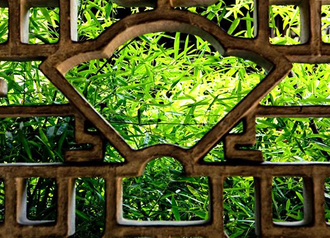 中式园林庭院花窗的形神妙境  梦窗清吟 蕉窗漏影