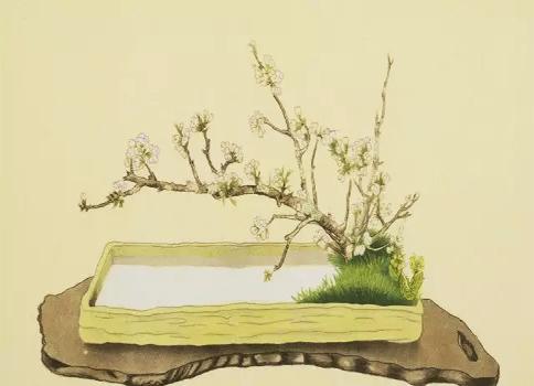 中式传统禅意插花——幽香清远,弥久不歇