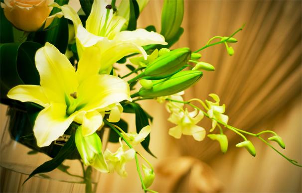 中式空间花艺装饰之百合花——素雅花韵暗芬芳