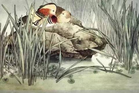 书画文化水墨中国,鸳鸯戏水图!