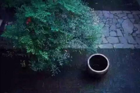 享受着中式风雅情趣 古鼎焚香,素麈挥尘